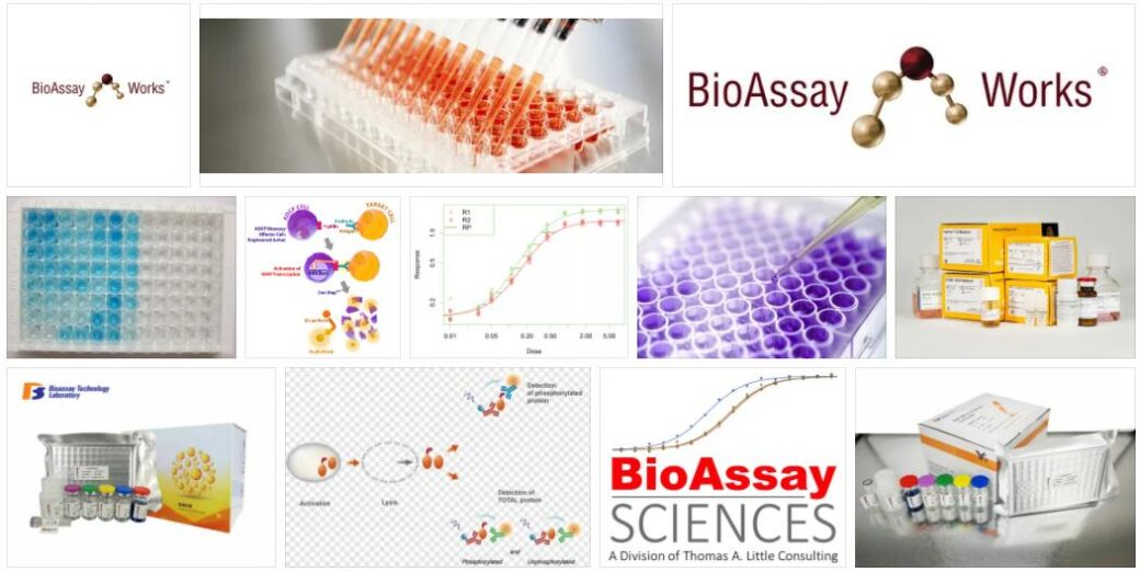 Bioassay