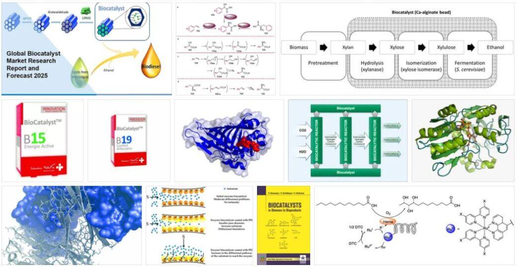 Biocatalyst