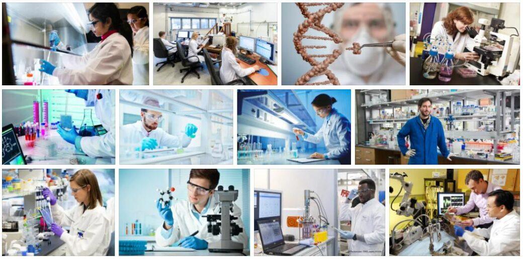 Bioengineering
